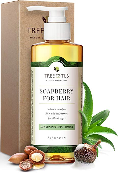 Real, Mint Shampoo For Oily Hair. The Only pH 5.5 Balanced Itchy Scalp Shampoo for Men and Women with Sensitive Skin