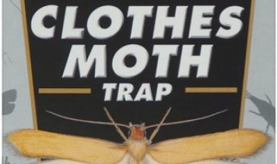 Top 10 Best Moth Traps in 2020